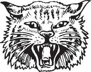 Wildcats artwork category