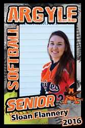 Softball Banner Designs artwork category