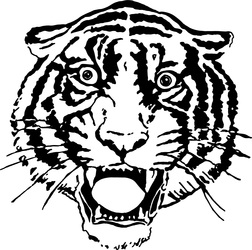 107tiger artwork
