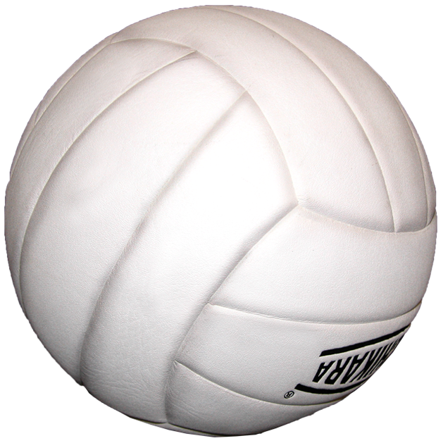 Volleyball Designs stock design