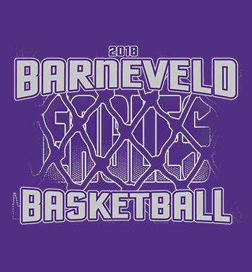 Image for Barneveld Girls Basketball Fan Store 2018
