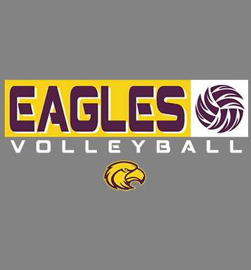 Image for Fennimore Volleyball 2018