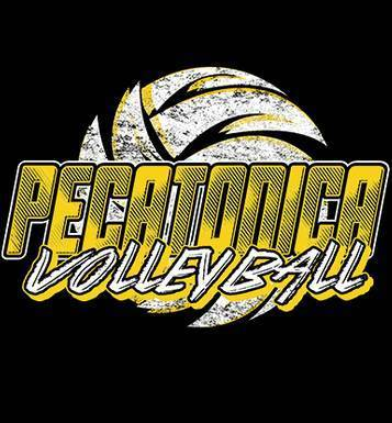 Image for Pecatonica Volleyball 2018
