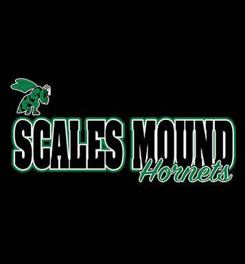 Image for Scales Mound School 2019 Round 2