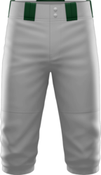 Sublimated Prolook Knicker Baseball Pant