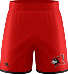 Sublimated Prolook Match Soccer Shorts